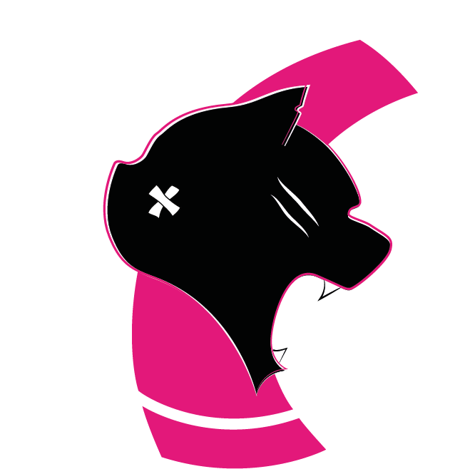 roller derby panthers